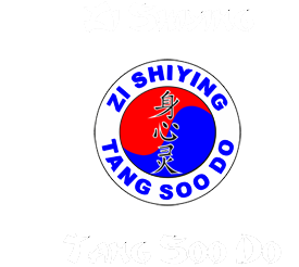Zi Shiying Tang Soo Do